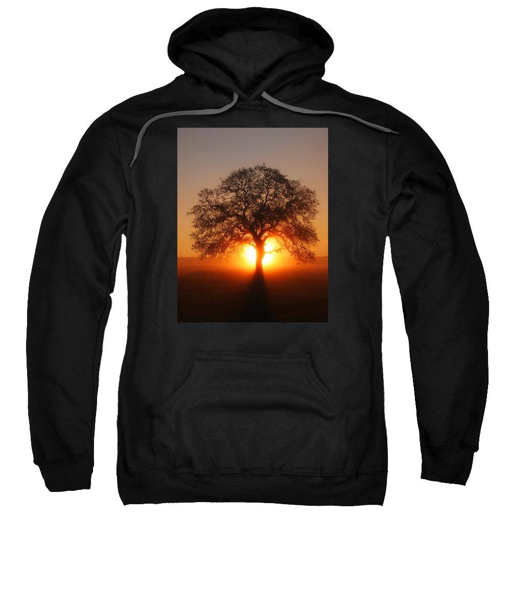 Tree Sweatshirt featuring the photograph Tree Fog Sunrise by Robert Woodward