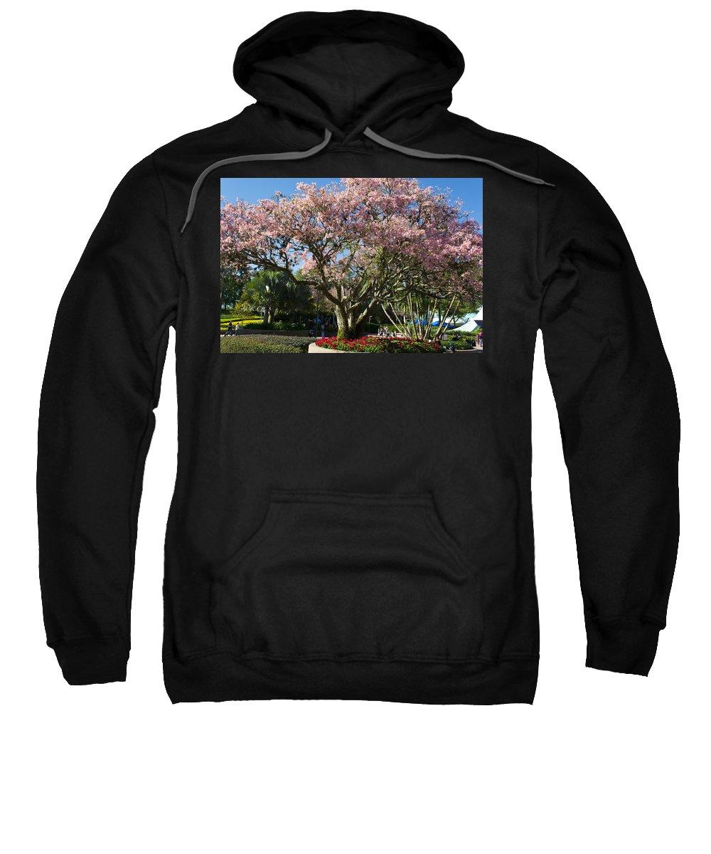 Spring Season Sweatshirt featuring the photograph Tree With Pink Flowers by Jatinkumar Thakkar