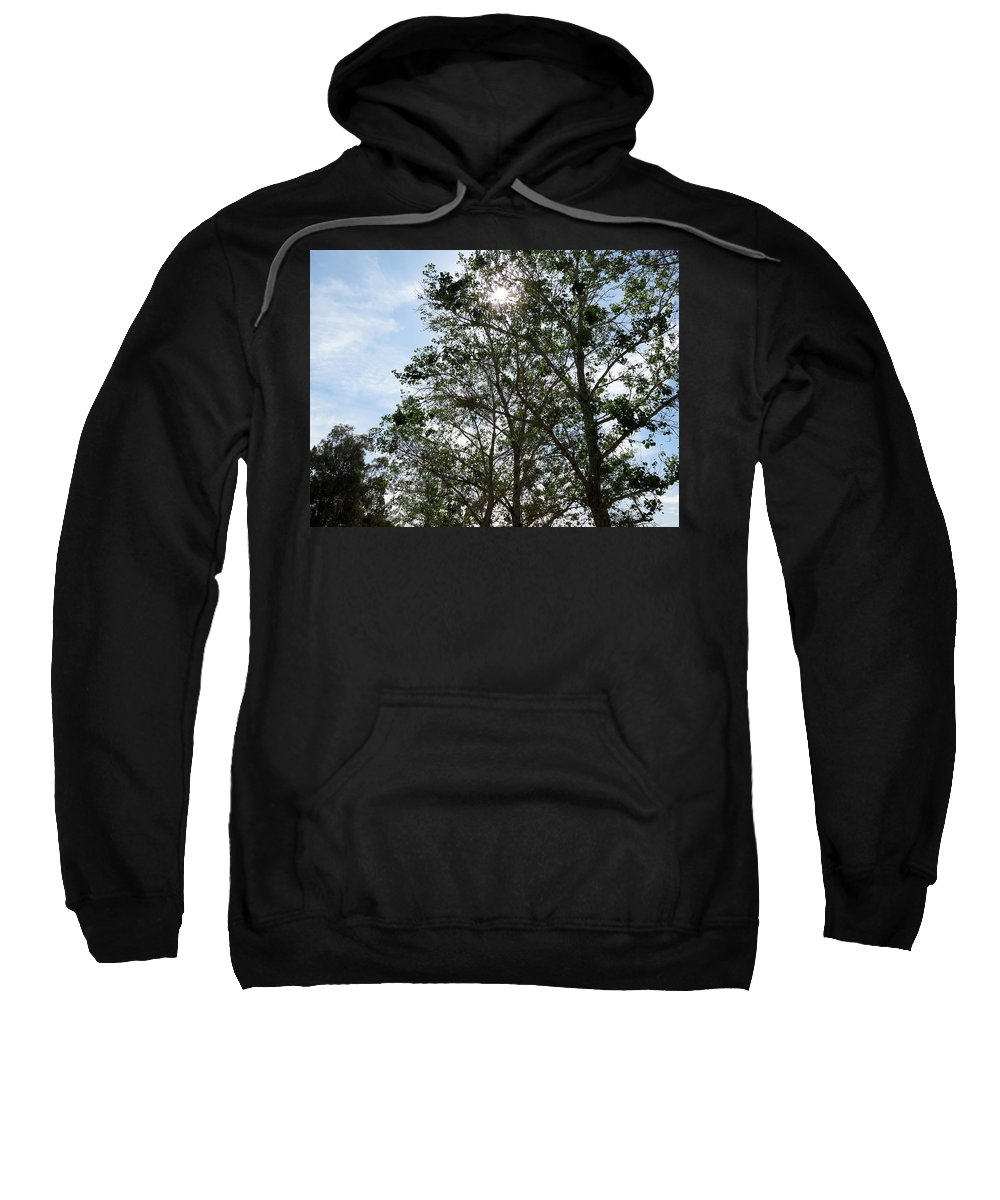 Nature Sweatshirt featuring the photograph Trees At The Park by Laurel Powell