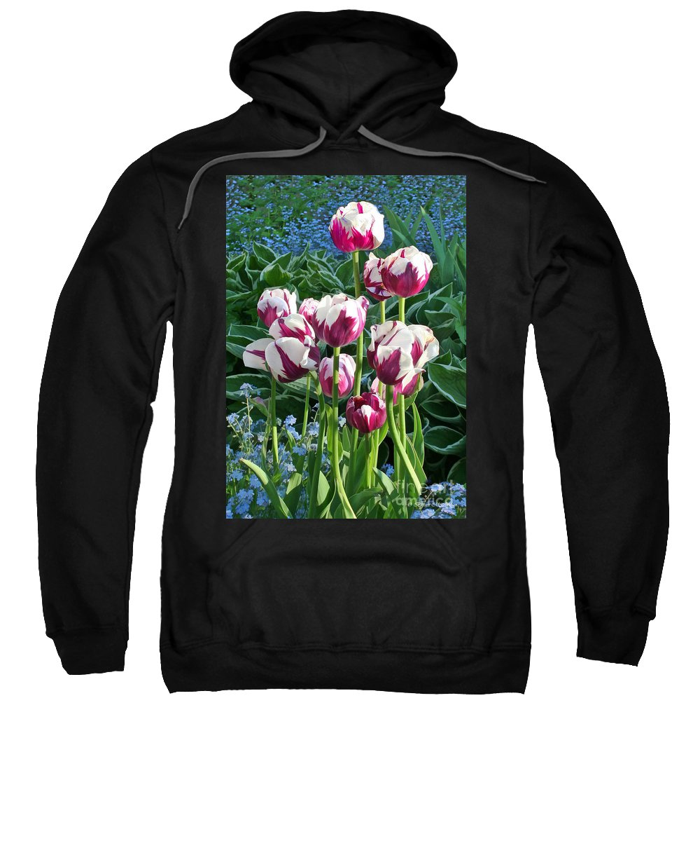 Flowers Sweatshirt featuring the photograph Tulips Among The Forget Me Nots by Barbara McMahon