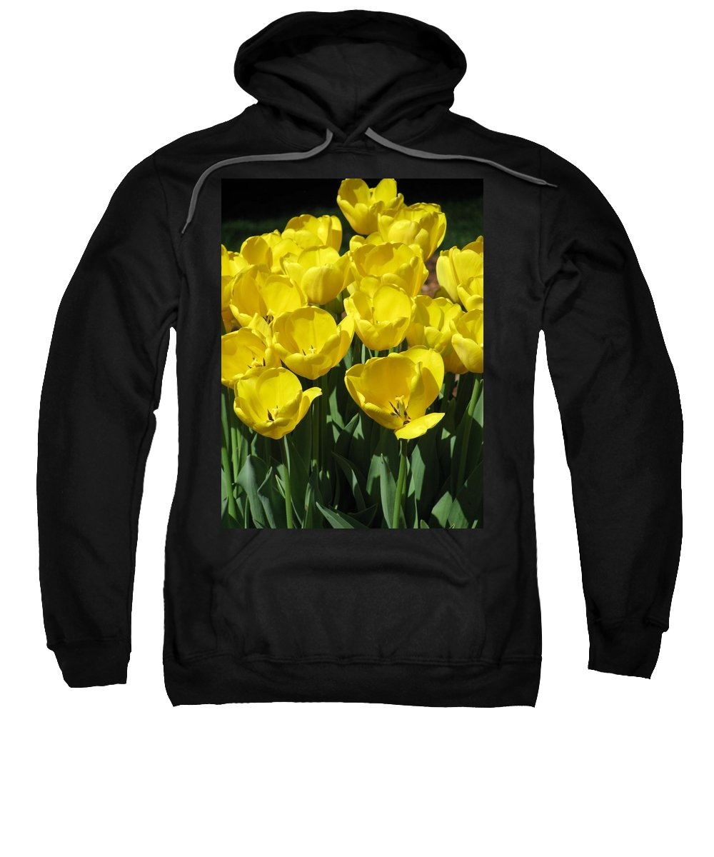 Tulip Sweatshirt featuring the photograph Tulips - Field With Love 18 by Pamela Critchlow
