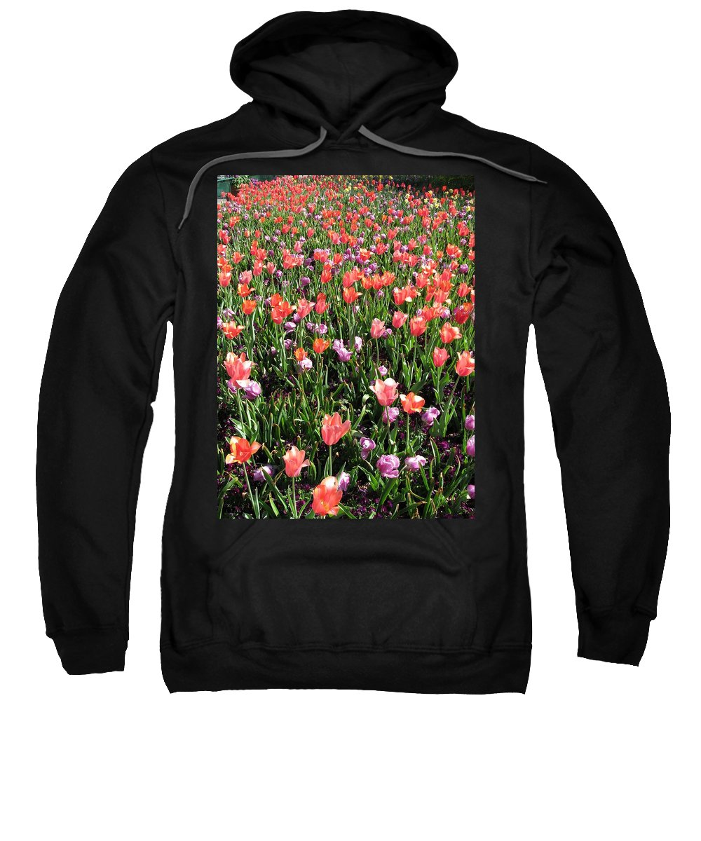 Tulip Sweatshirt featuring the photograph Tulips - Field With Love 55 by Pamela Critchlow