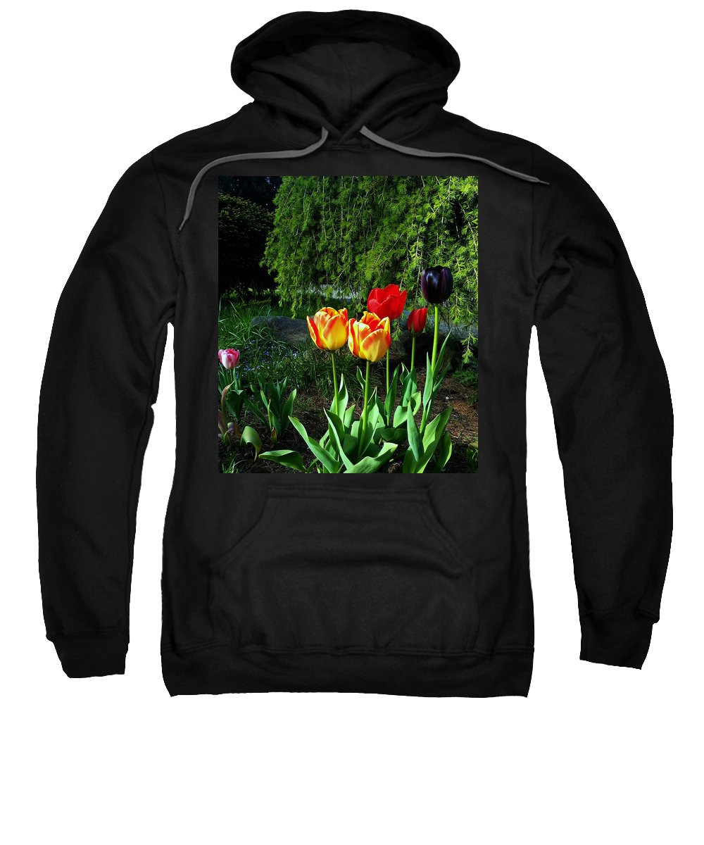 Flower Sweatshirt featuring the photograph Tulips In The Spring by Jeanette C Landstrom