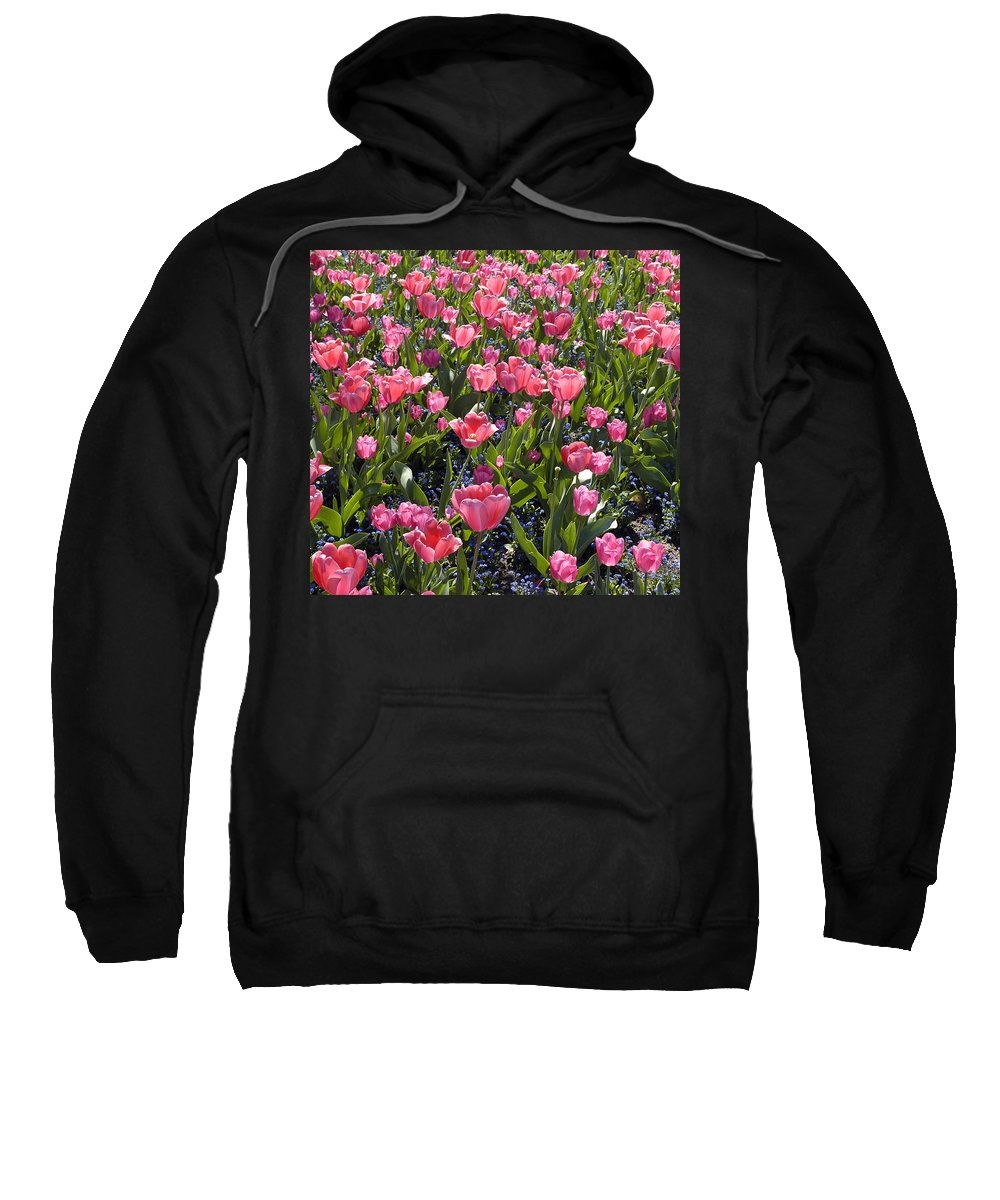 Tulips Sweatshirt featuring the photograph Tulips by Matthias Hauser