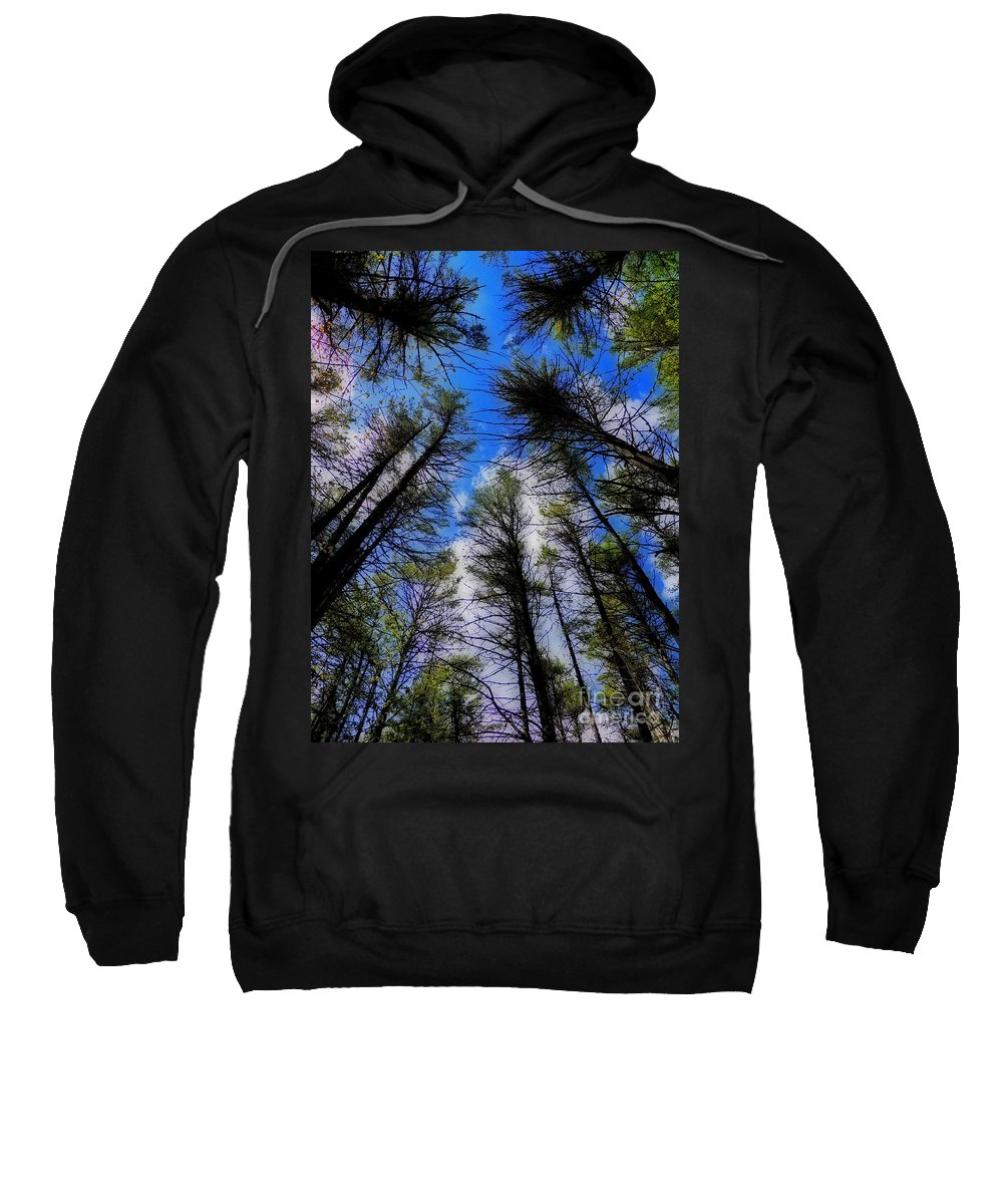 Scenic Tours Sweatshirt featuring the photograph Tunnel Vision by Skip Willits