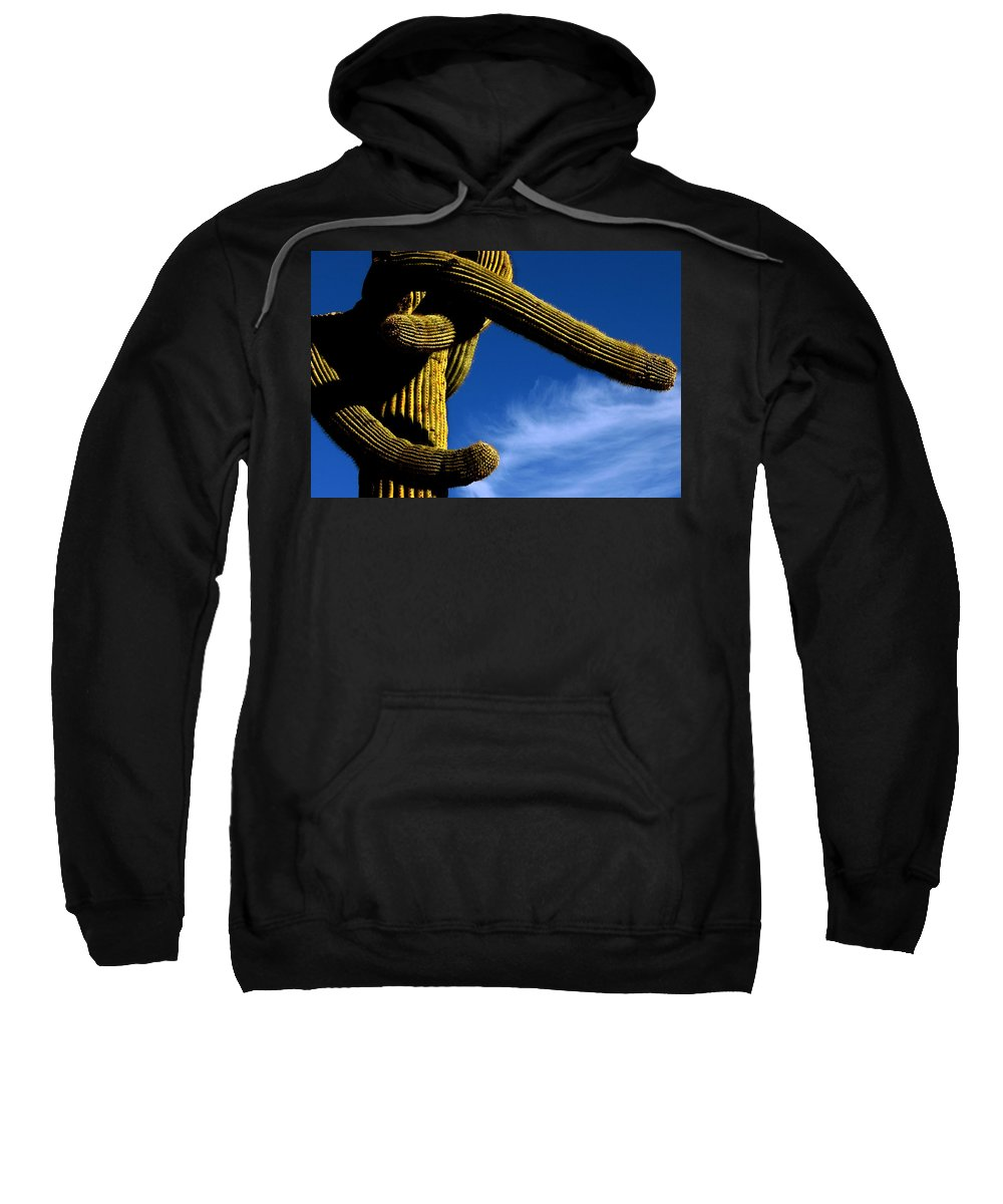 Sweatshirt featuring the photograph Twisted by Reed Rahn