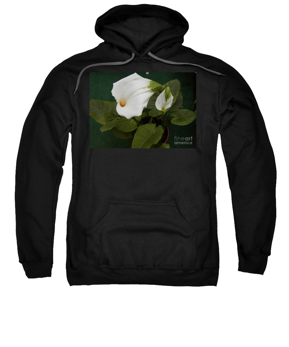 Lily Sweatshirt featuring the photograph Two Lilies by Jussta Jussta