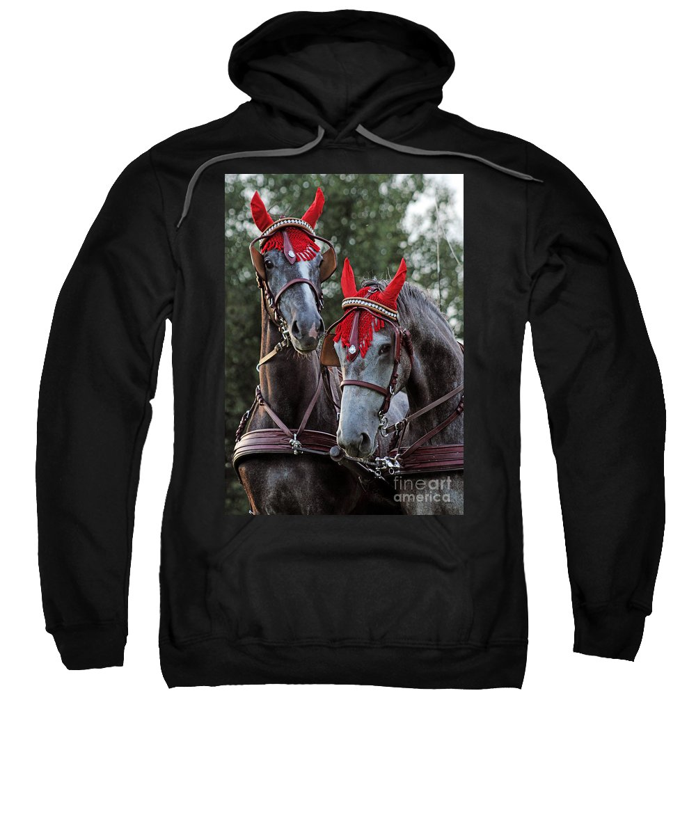 Horse Sweatshirt featuring the photograph Two Red Devils by Angel Ciesniarska