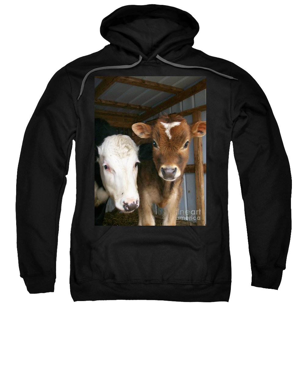 Cows Sweatshirt featuring the photograph Two's Company by Sara Raber
