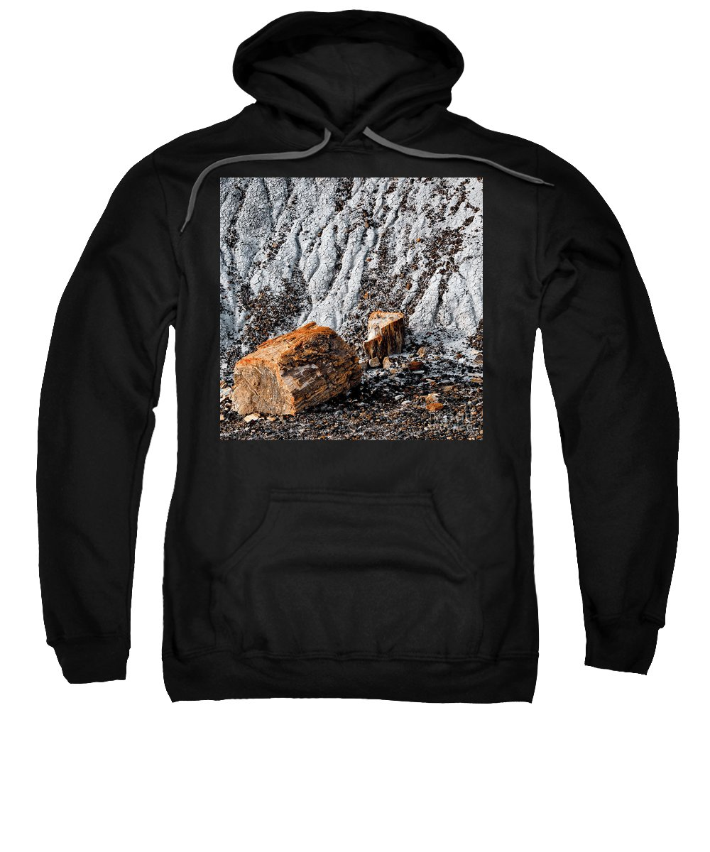 Digital Color Photo Sweatshirt featuring the digital art Very Old Logs by Tim Richards