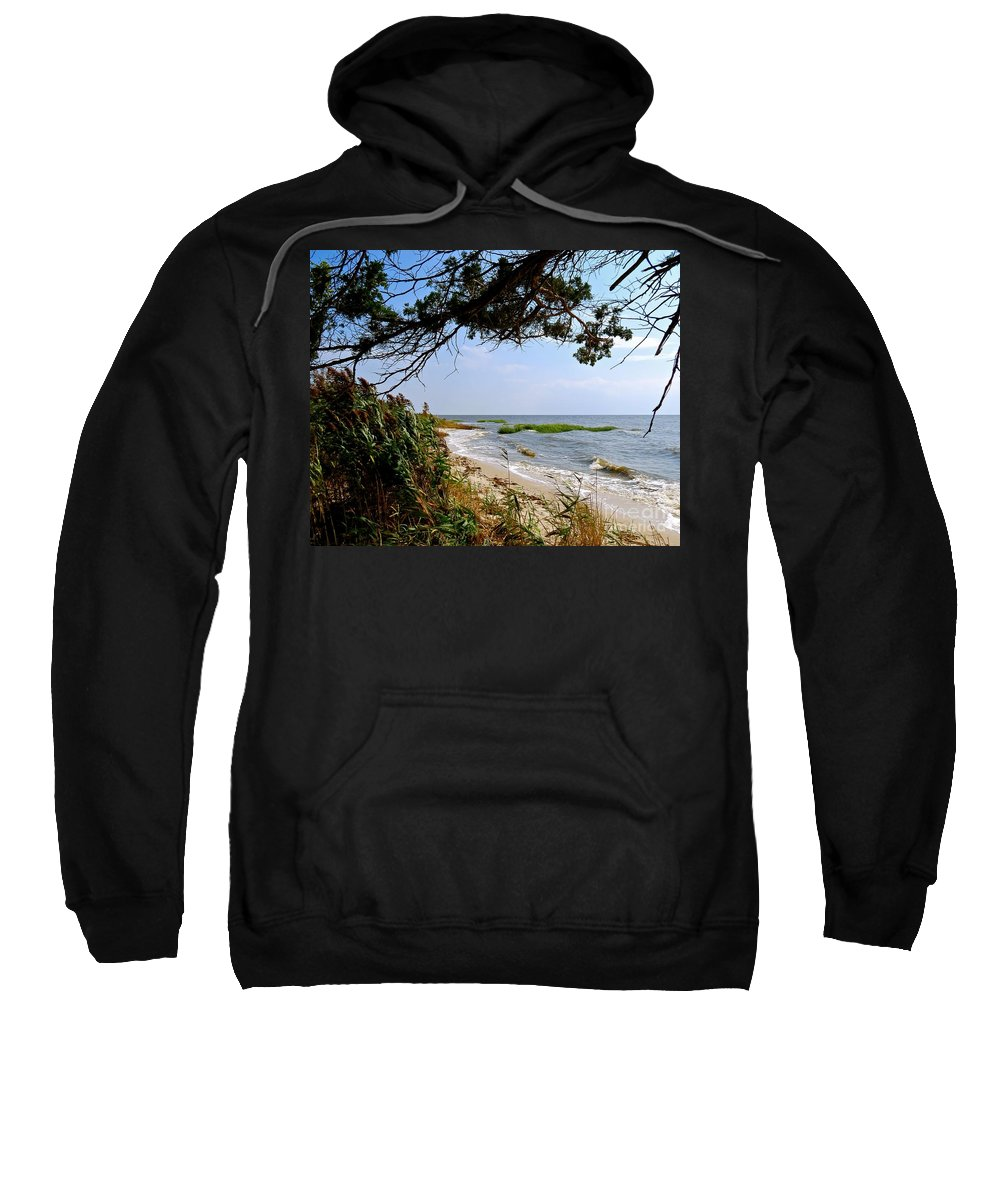East Point Sweatshirt featuring the photograph View At East Point by Nancy Patterson