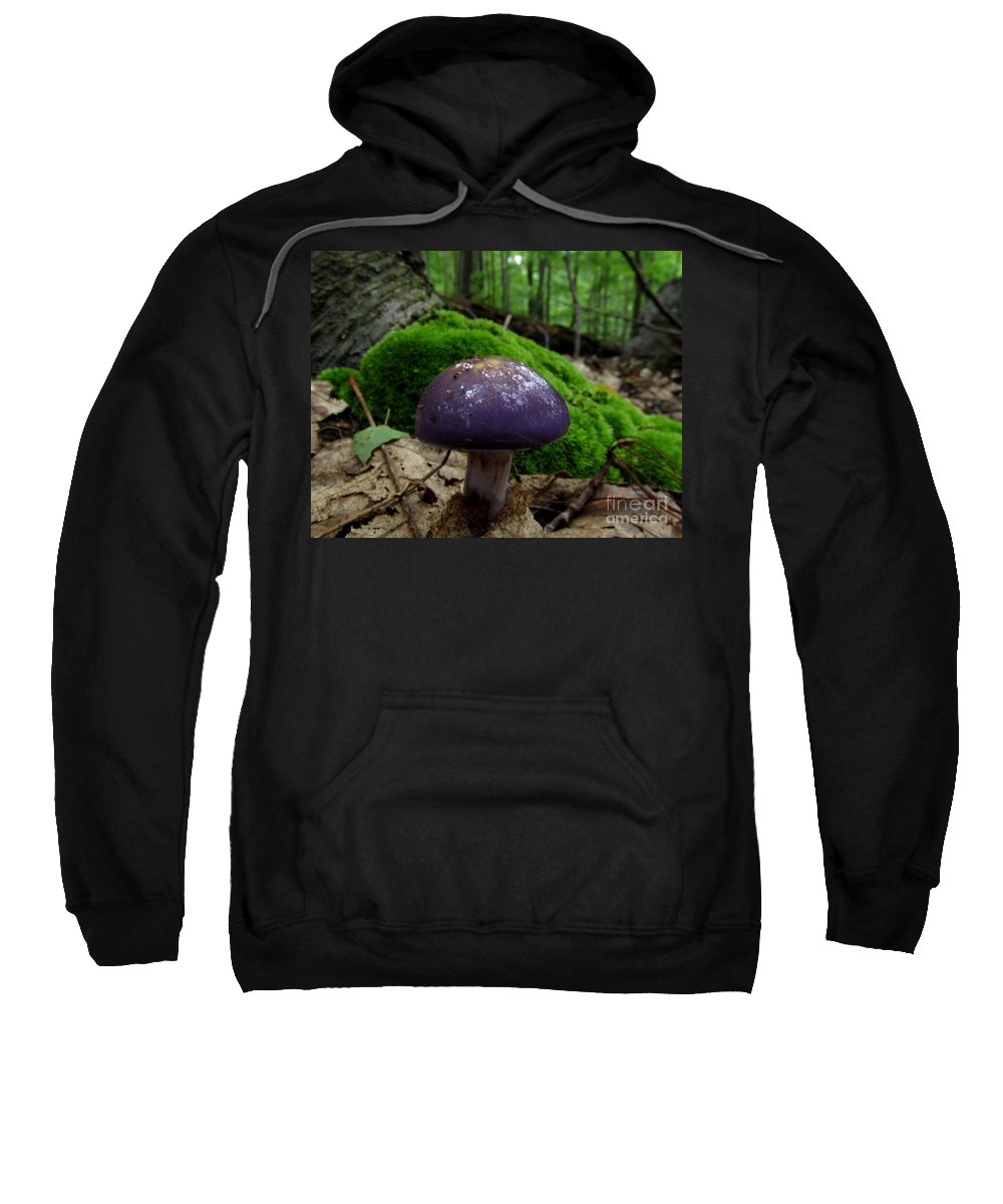 Purple Mushroom Prints Purple Fungi Forest Fungi Forest Flora Nature Prints Natural Design Wild Prints Viscid Violet Cort Cortinarius Iodes Spotted Cort Violet Mushrooms Sweatshirt featuring the photograph Viscid Violet Cort by Joshua Bales