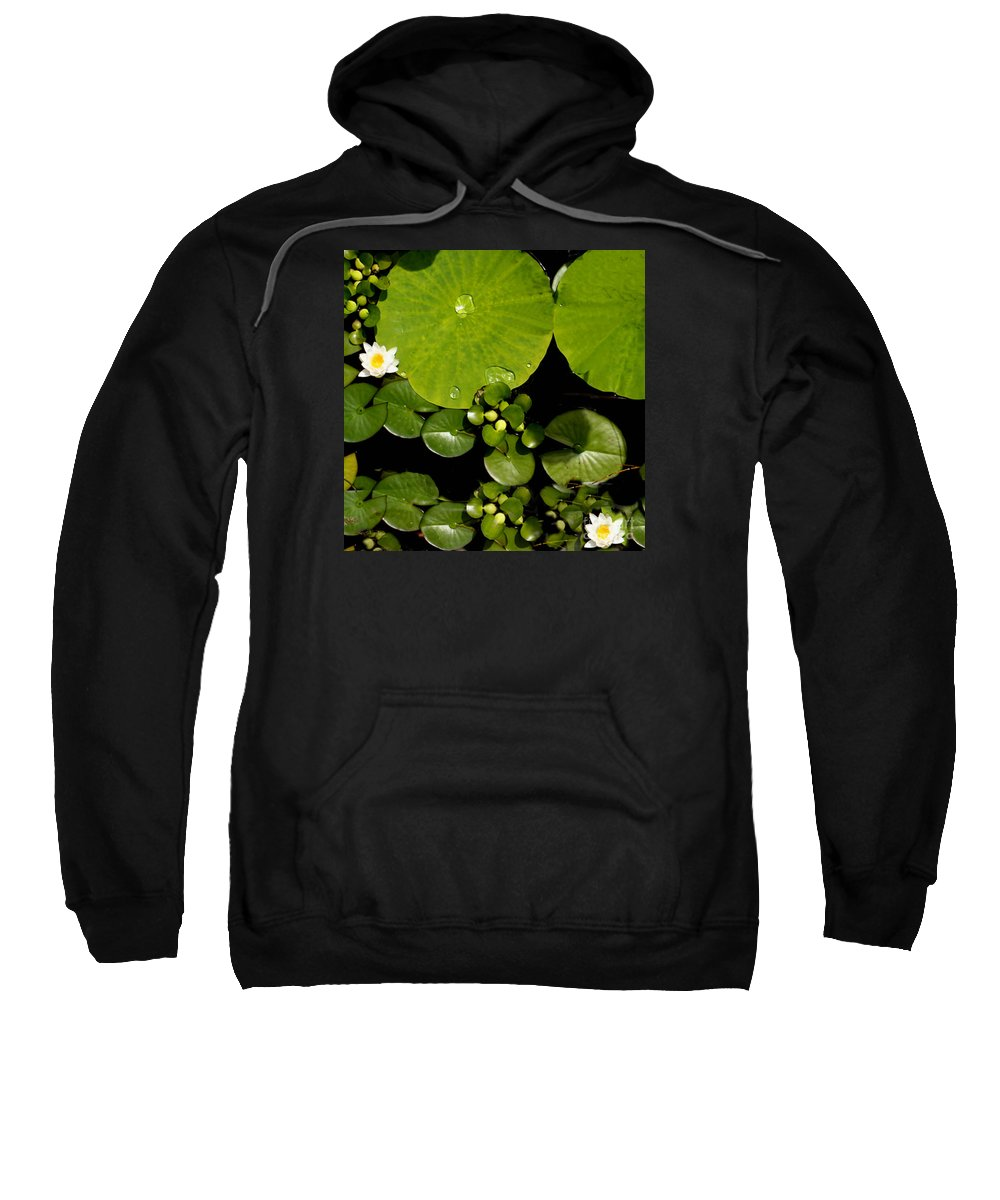 Lily Pad Photograph Sweatshirt featuring the photograph Water Drops Bristol Rhode Island by Tom Prendergast