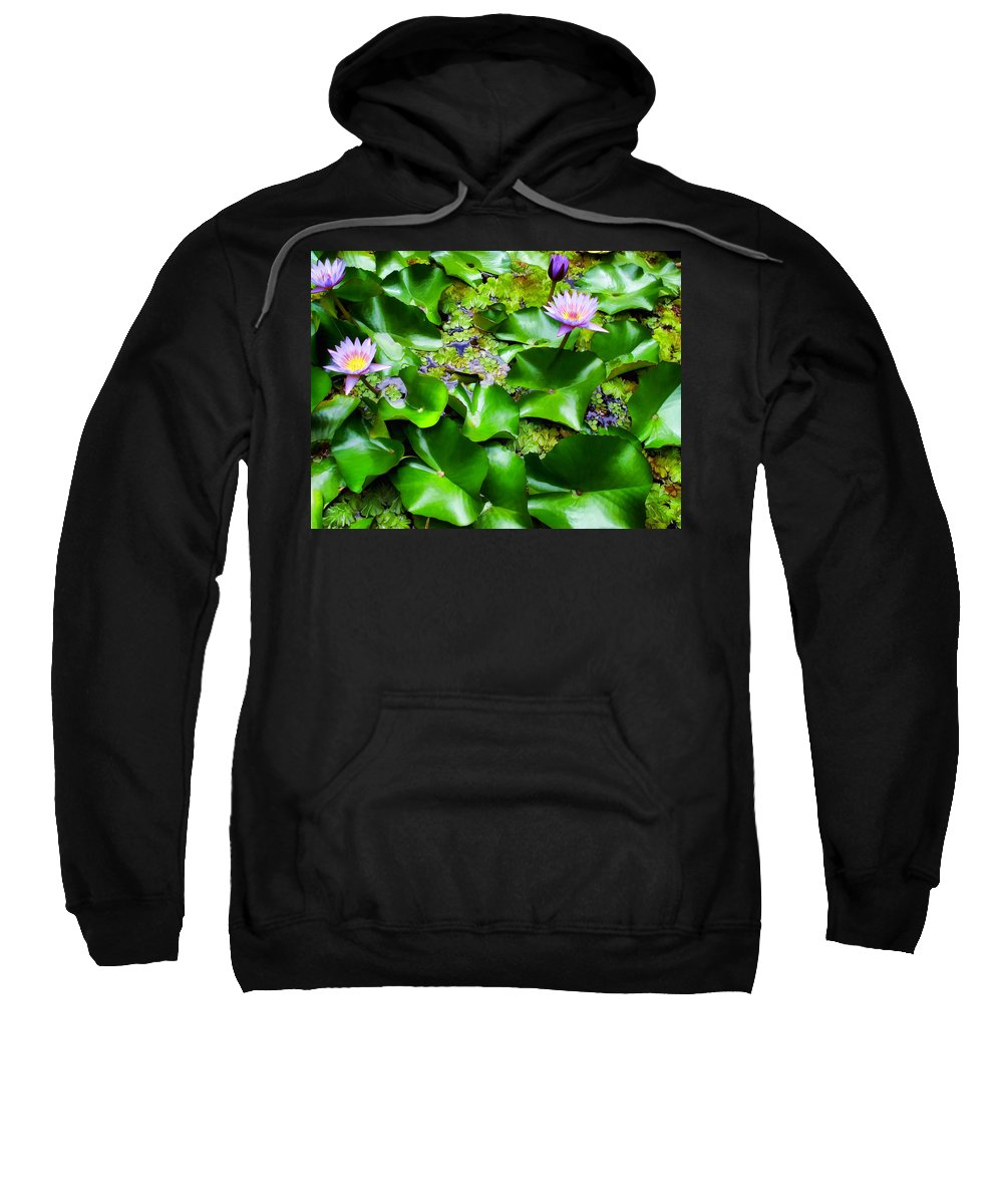 Flowers Sweatshirt featuring the photograph Water Lilies 31 by Dawn Eshelman