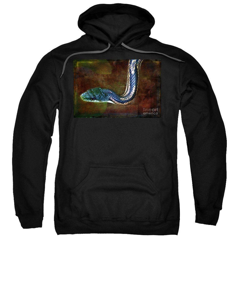 Water Sweatshirt featuring the photograph Water Snake by Judi Bagwell