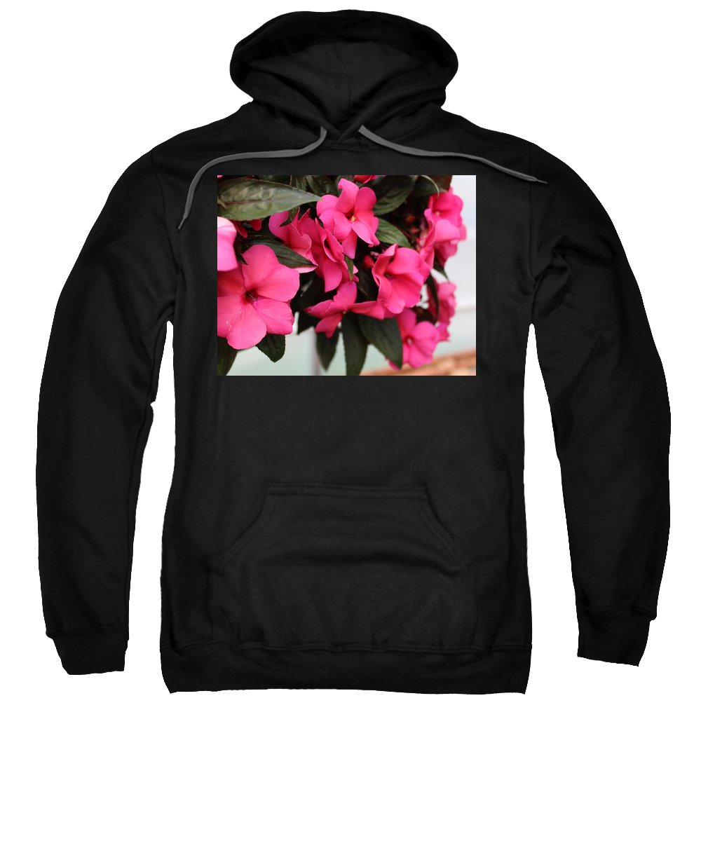 Pink Impatiens Sweatshirt featuring the photograph Watermelon by Sylvia Thornton