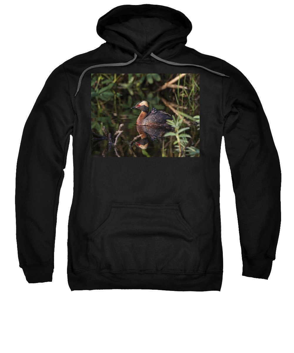 Doug Lloyd Sweatshirt featuring the photograph Were Reflected by Doug Lloyd
