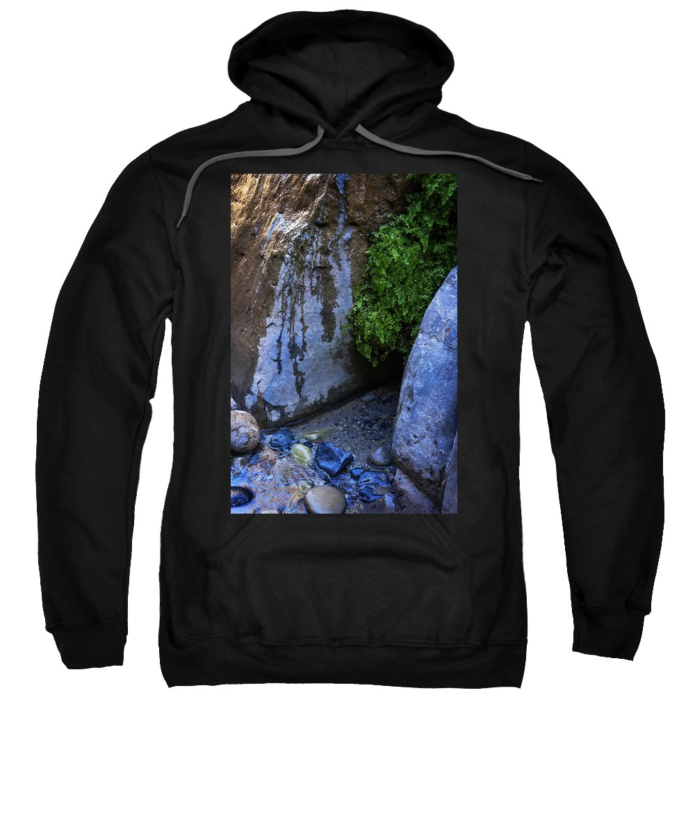 Water Sweatshirt featuring the photograph Wet Environments 1 by Marilyn Hunt