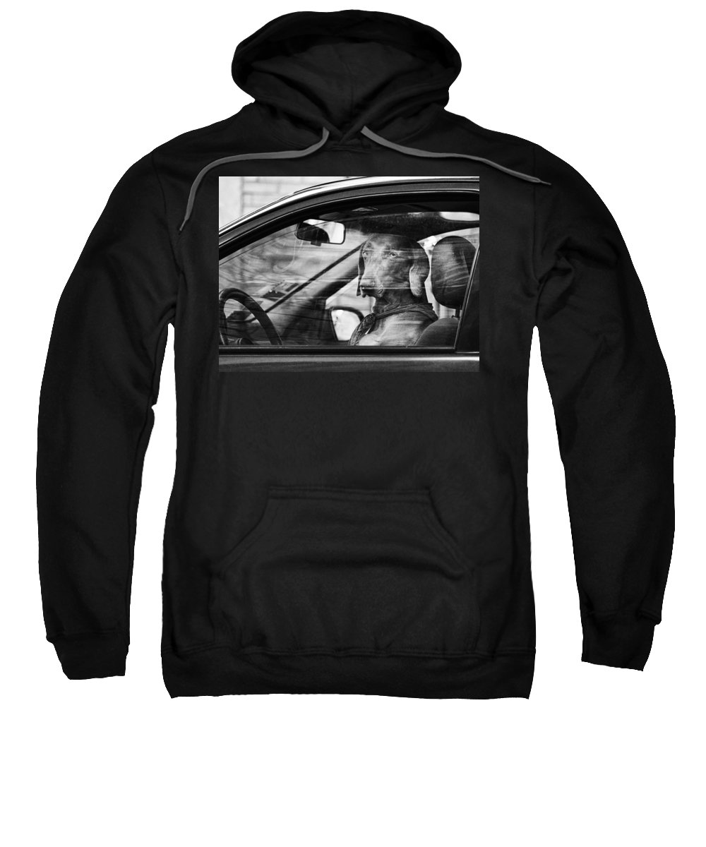 Dog Sweatshirt featuring the photograph What Is Wrong With You by Osvaldo Hamer
