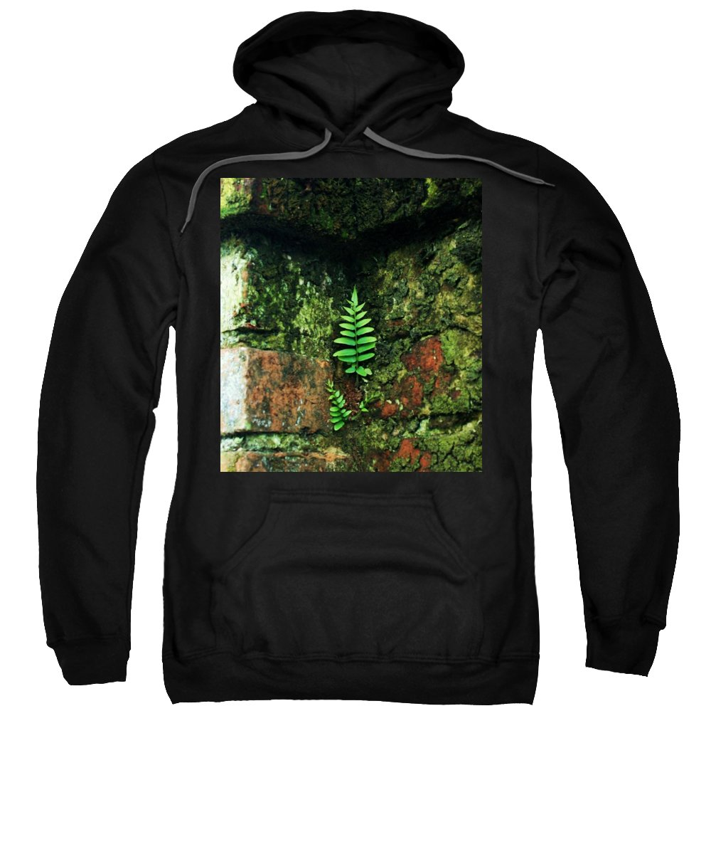 Determination Sweatshirt featuring the photograph Where There Is A Will by John Glass