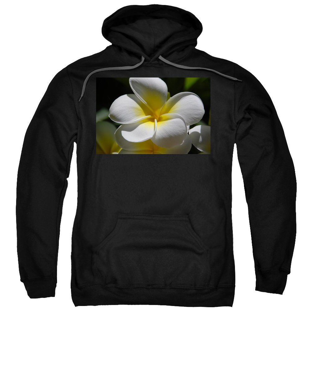 Nature Sweatshirt featuring the photograph White Bloom by Rob Hans
