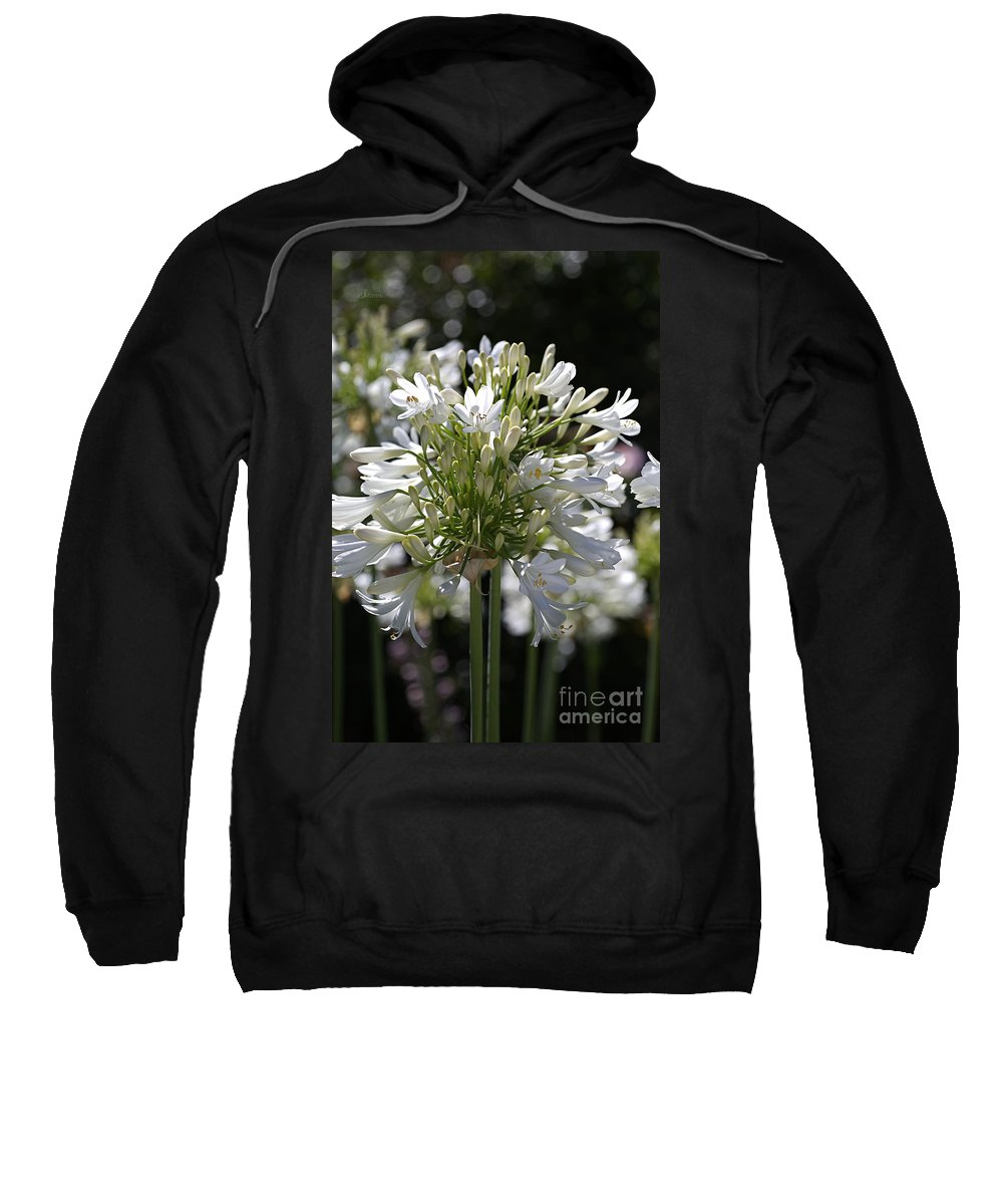 Bloom Sweatshirt featuring the photograph White Bright Agapanthus by Joy Watson