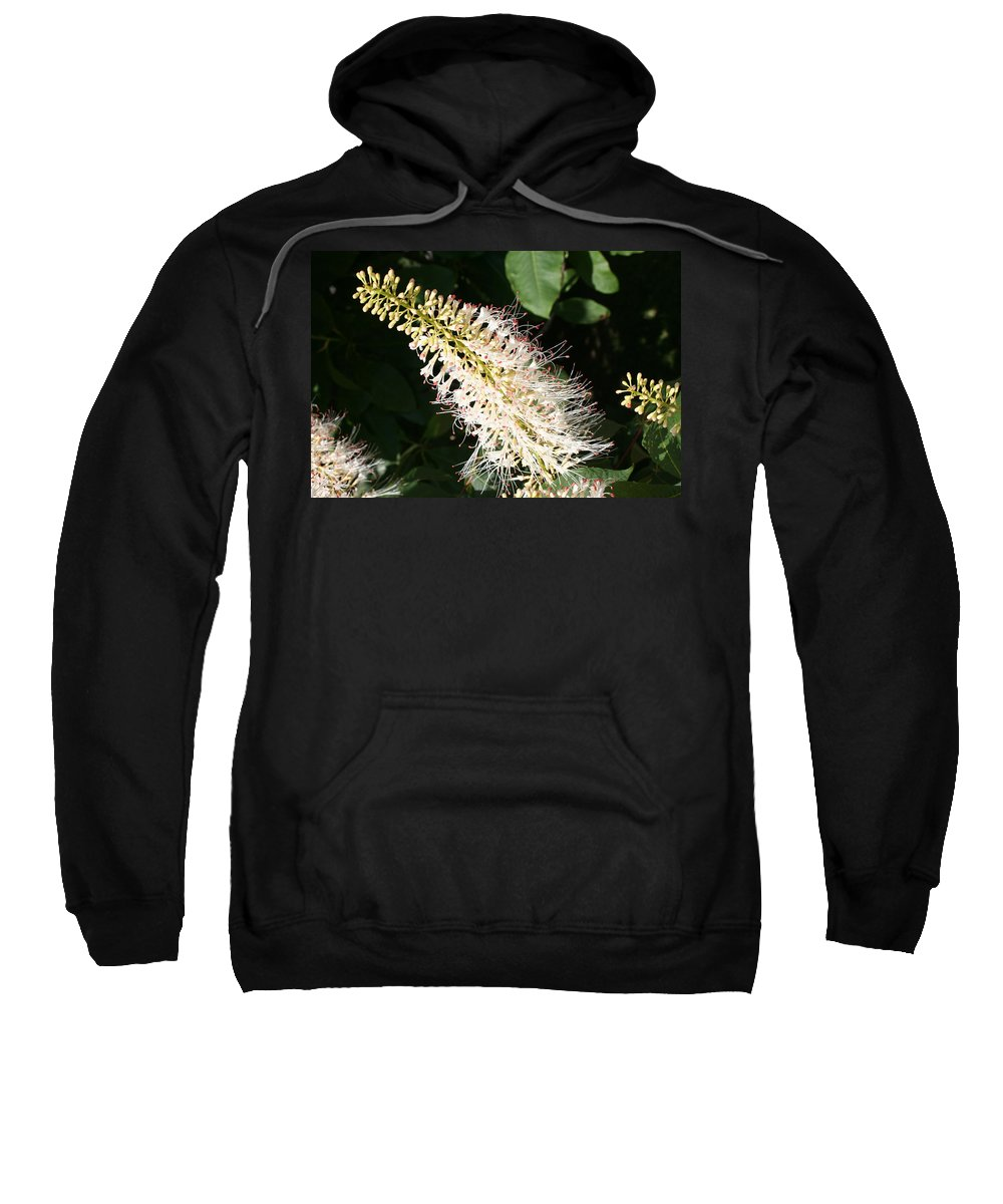White Flowers Sweatshirt featuring the photograph White Flower Panicle by Christiane Schulze Art And Photography