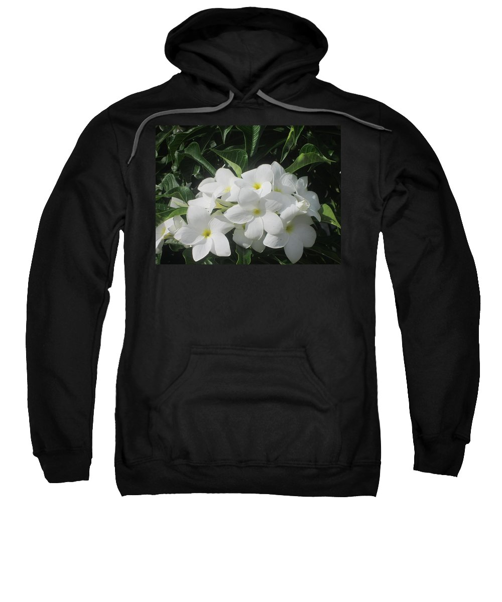 Flowers Sweatshirt featuring the photograph White Flowers by Jo Jurkiewicz