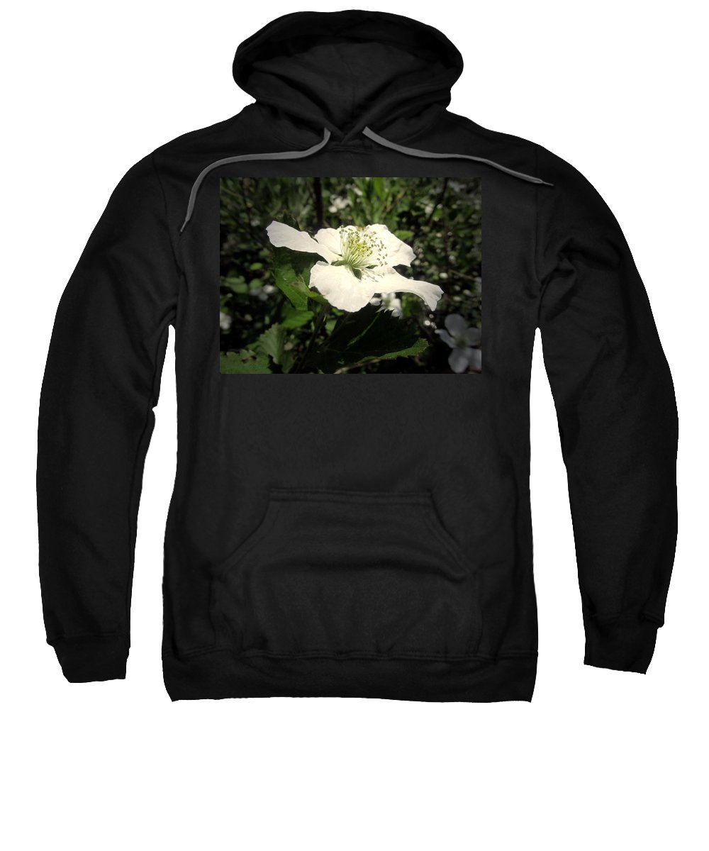 Berry Sweatshirt featuring the photograph Wild Blackberry Blossom by Joyce Dickens