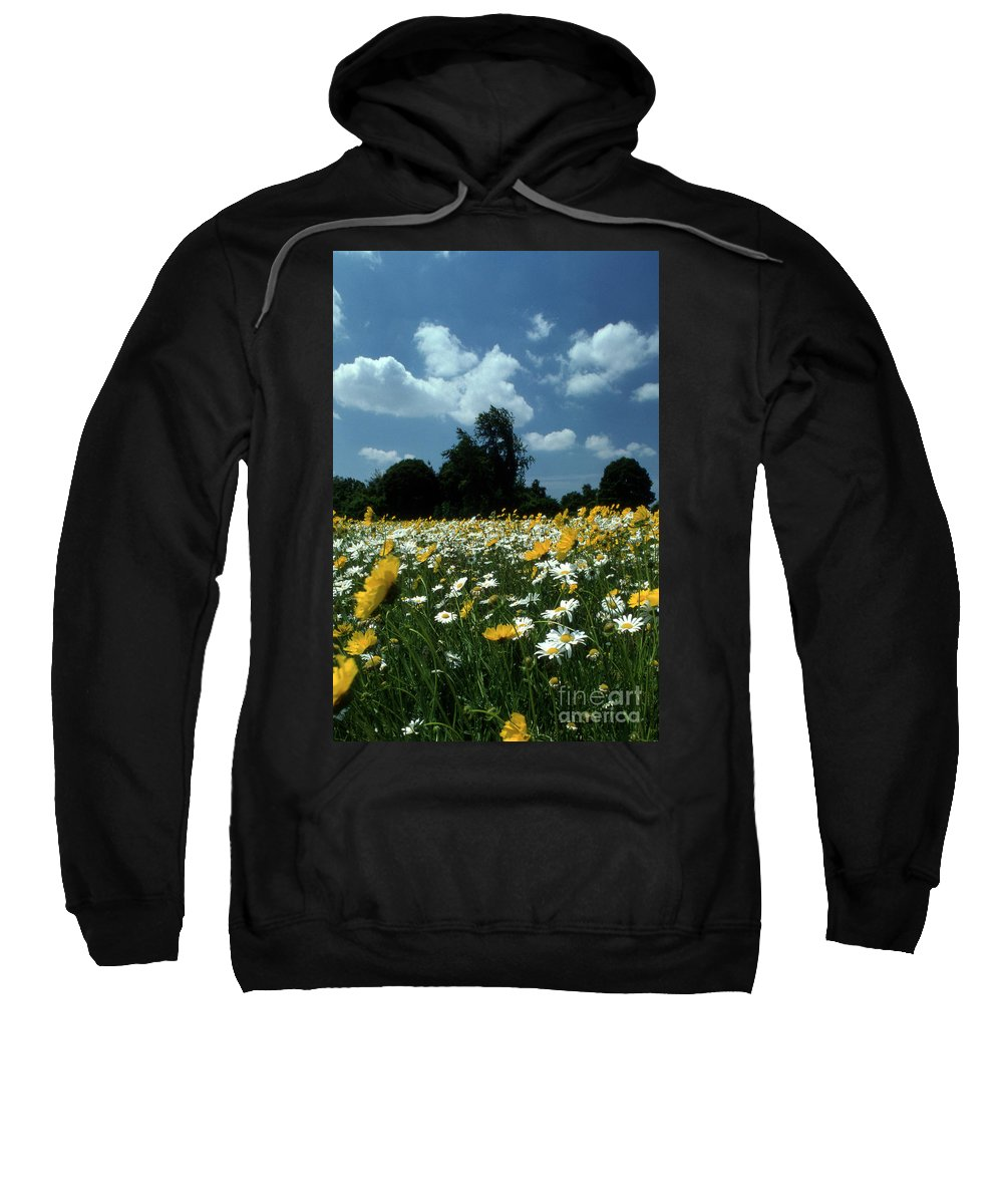 Pictures Of Flowers Sweatshirt featuring the photograph Wildflowers by Skip Willits