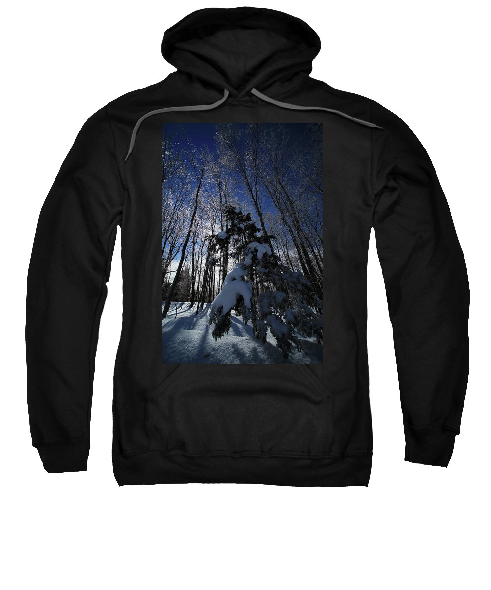 Winter Sweatshirt featuring the photograph Winter Blue by Karol Livote
