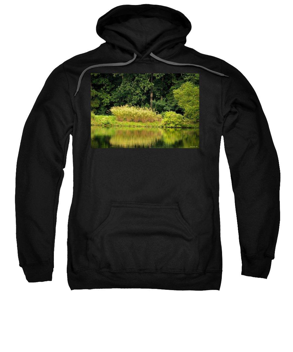 Wispy Sweatshirt featuring the photograph Wispy Wild Grass Reflections by Maria Urso
