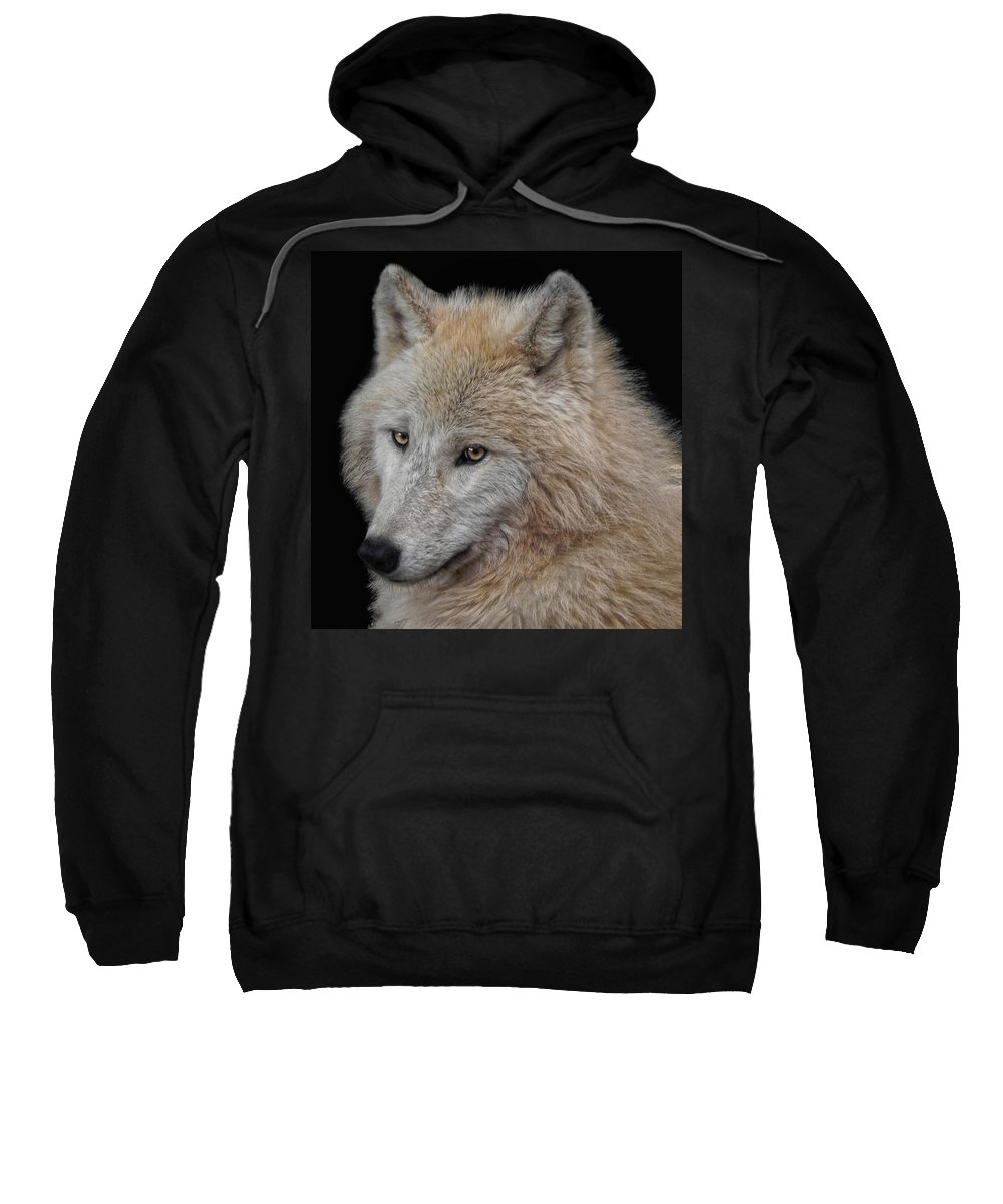 Animal Sweatshirt featuring the photograph Wolf Bride by Joachim G Pinkawa