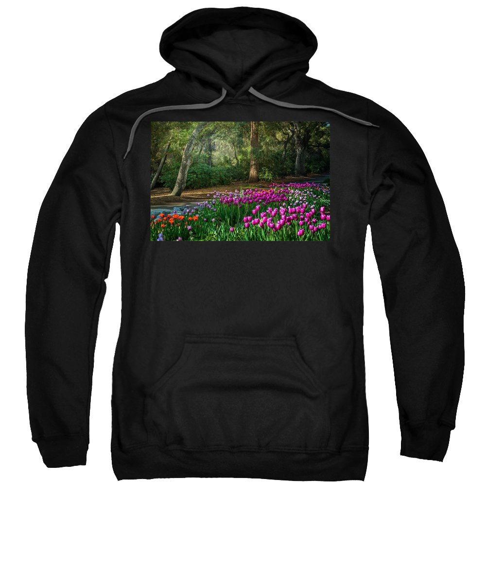Tulip Sweatshirt featuring the photograph Wooded Bliss by Lynn Bauer