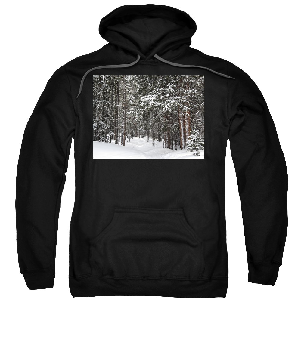 Forest Sweatshirt featuring the photograph Woods In Winter by Eric Glaser