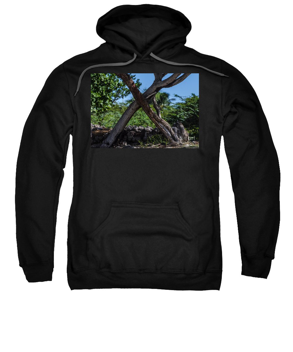 Trees Sweatshirt featuring the photograph X Marks The Spot by Judy Wolinsky