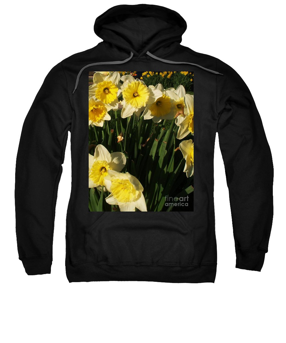 Flowers Sweatshirt featuring the photograph Yellow Day Lilies by Eric Schiabor