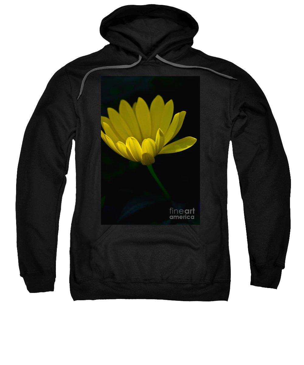 Flower Sweatshirt featuring the photograph Yellow Flower by Tom Gari Gallery-Three-Photography