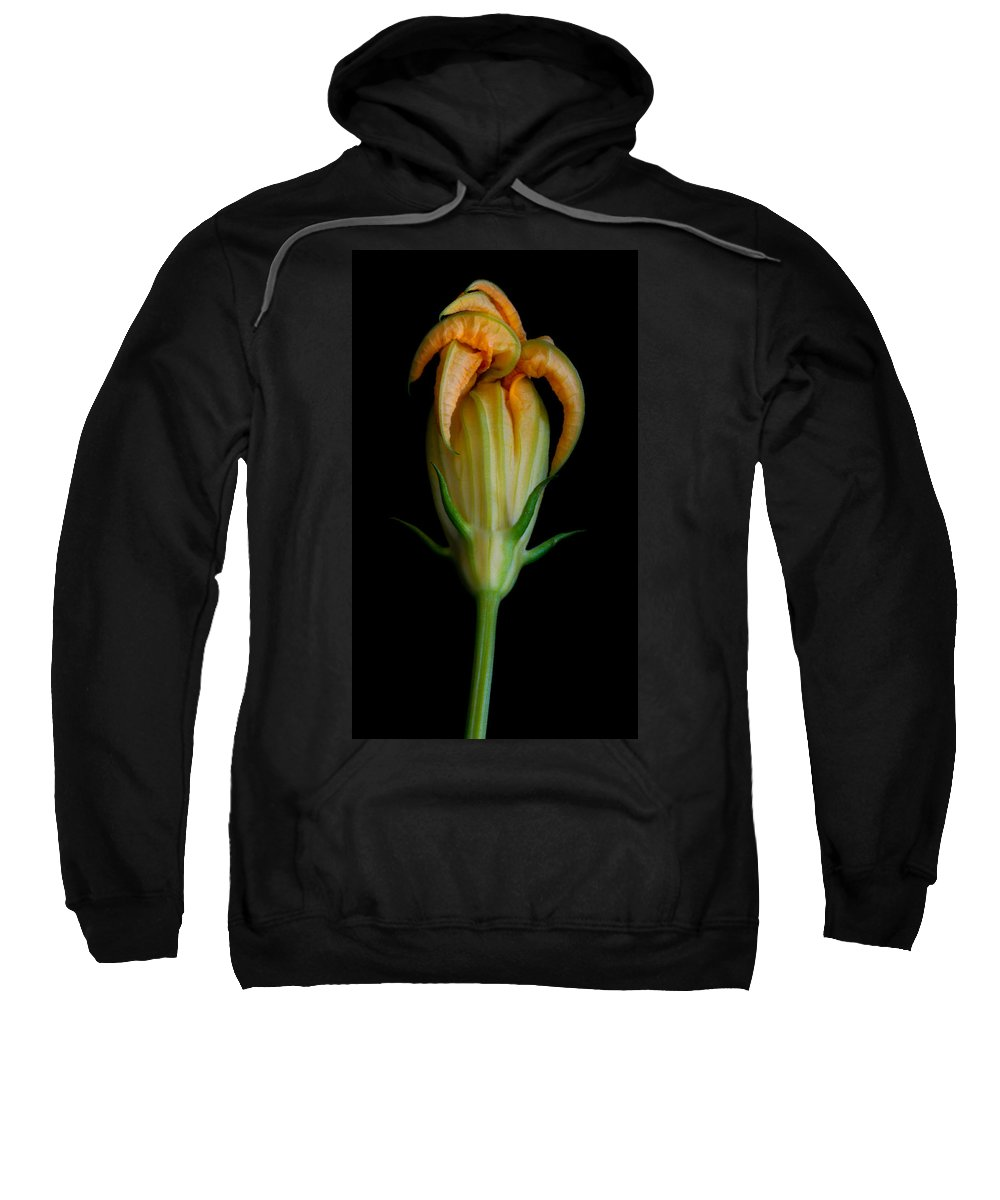 Flower Sweatshirt featuring the photograph Zucchini Jester by Robert Woodward
