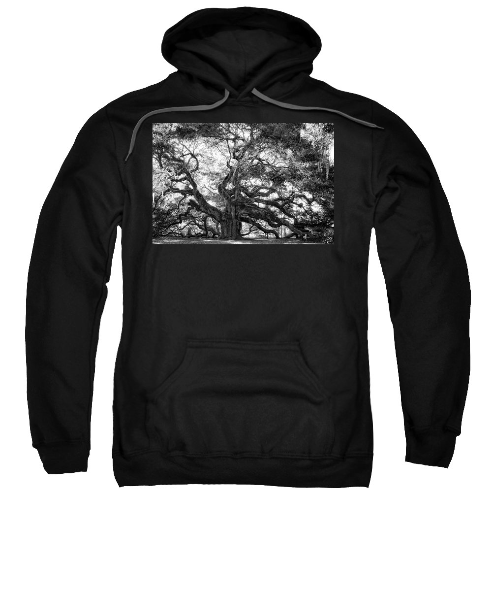 Angel Oak Sweatshirt featuring the photograph Angel Oak by Lynne Jenkins