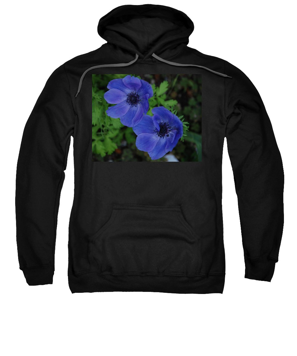 Blue Sweatshirt featuring the photograph Blue Flowers by Carol Eliassen