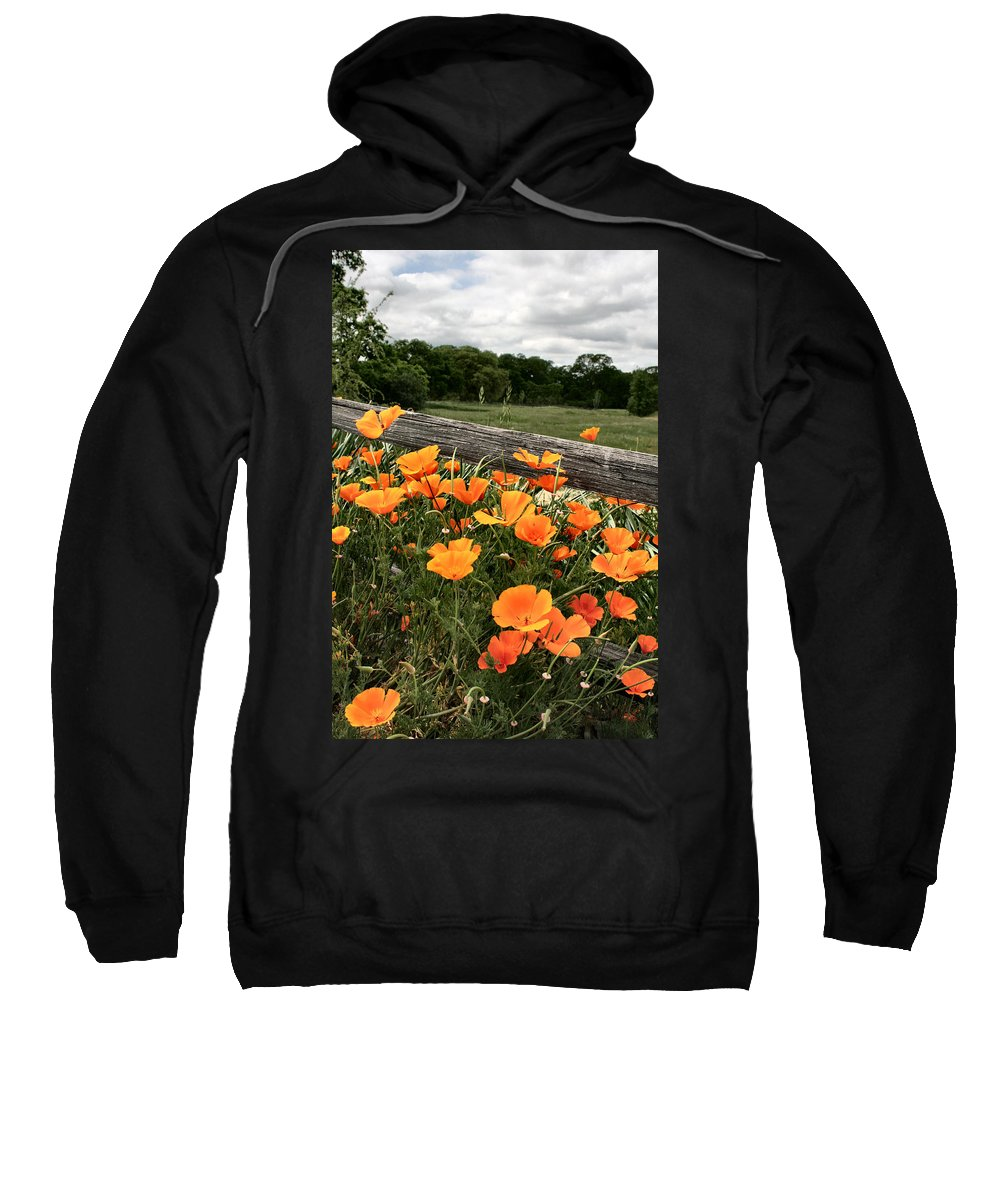 Poppies Sweatshirt featuring the photograph California Poppies by Sally Bauer