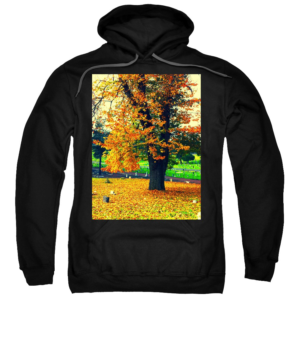 Autumn Sweatshirt featuring the photograph Fall by Priscilla De Mesa
