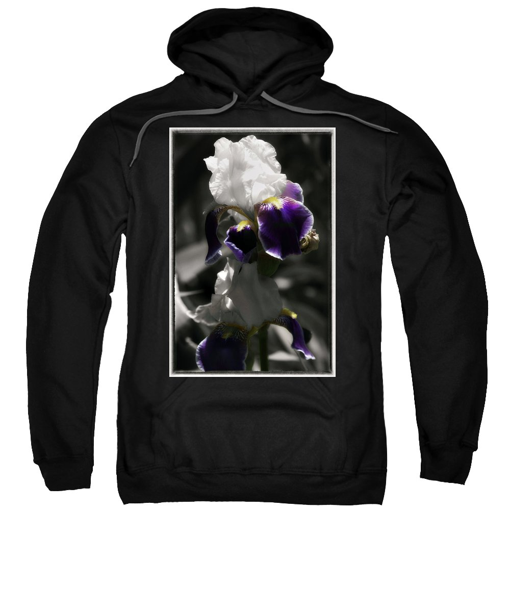 Digitally Hand Colored Sweatshirt featuring the photograph Filoli Iris by Linda Dunn