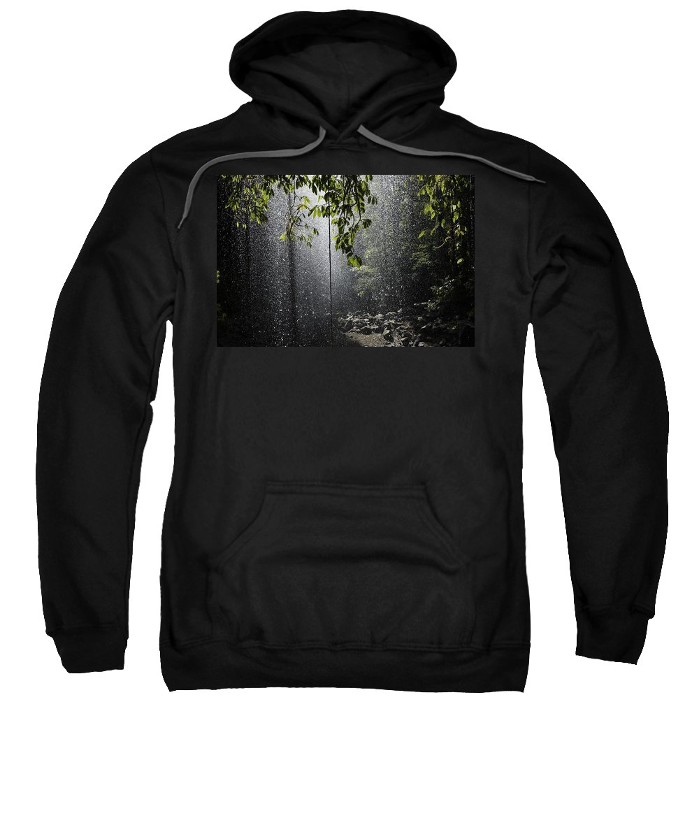 Beam Sweatshirt featuring the photograph Rainforest, Bellingen, Australia by Paul Hobson