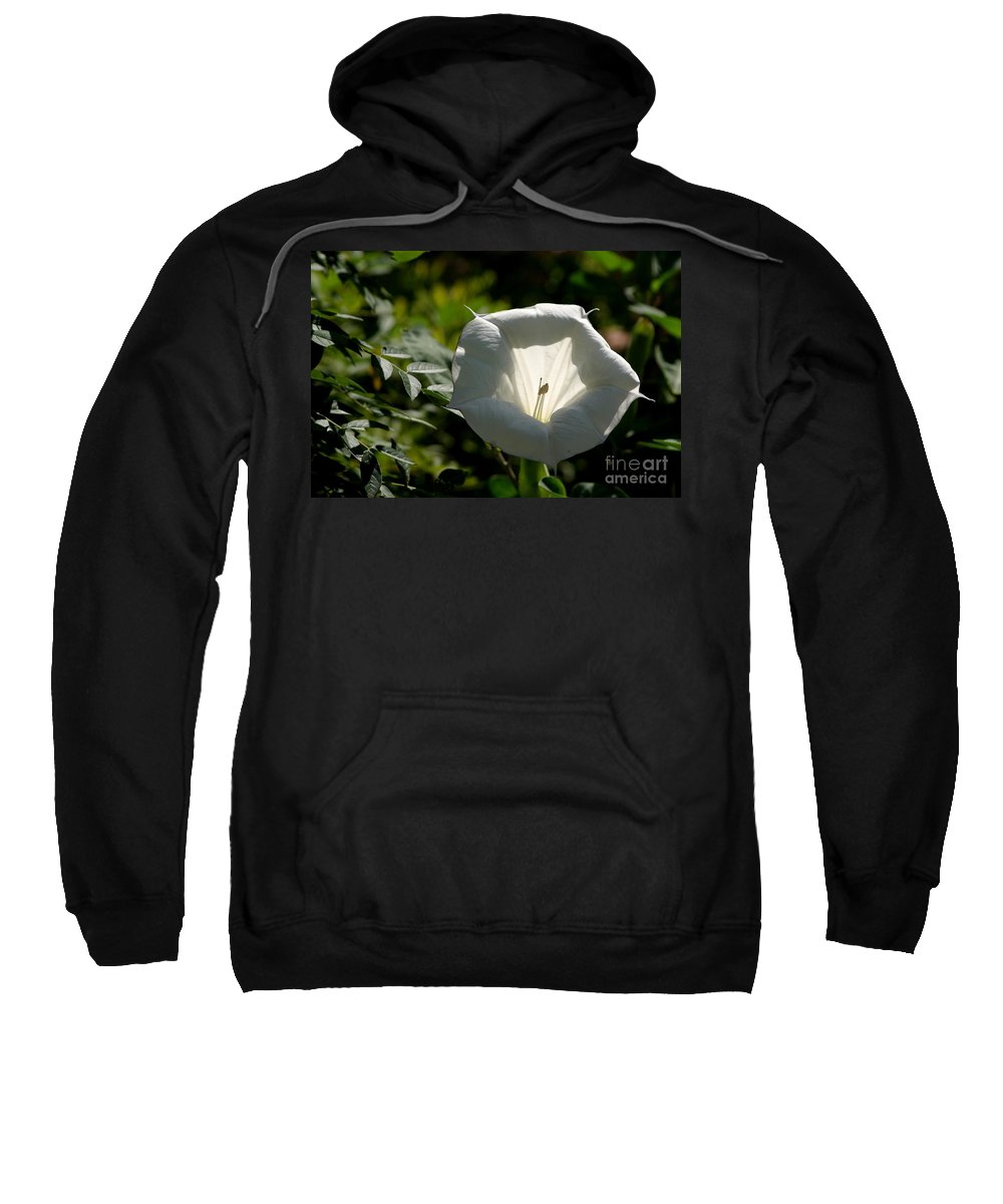 Floral Sweatshirt featuring the photograph The Light Within by Living Color Photography Lorraine Lynch