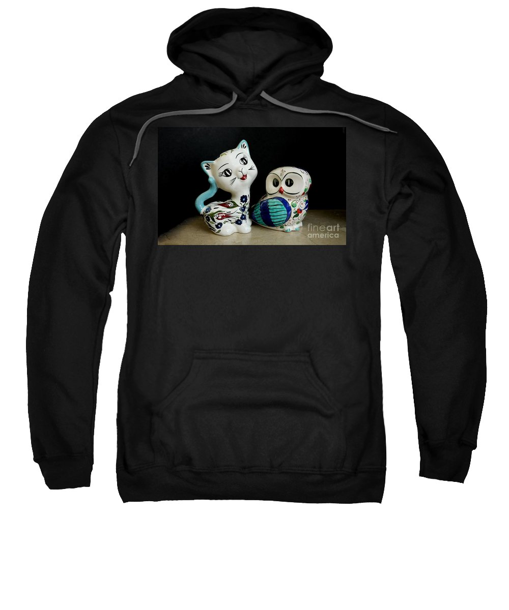The Owl And The Pussy Cat Sweatshirt featuring the photograph The Owl And The Pussy Cat by John Chatterley
