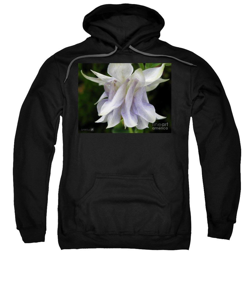 Double Columbine Sweatshirt featuring the photograph Double Columbine Named Light Blue by J McCombie