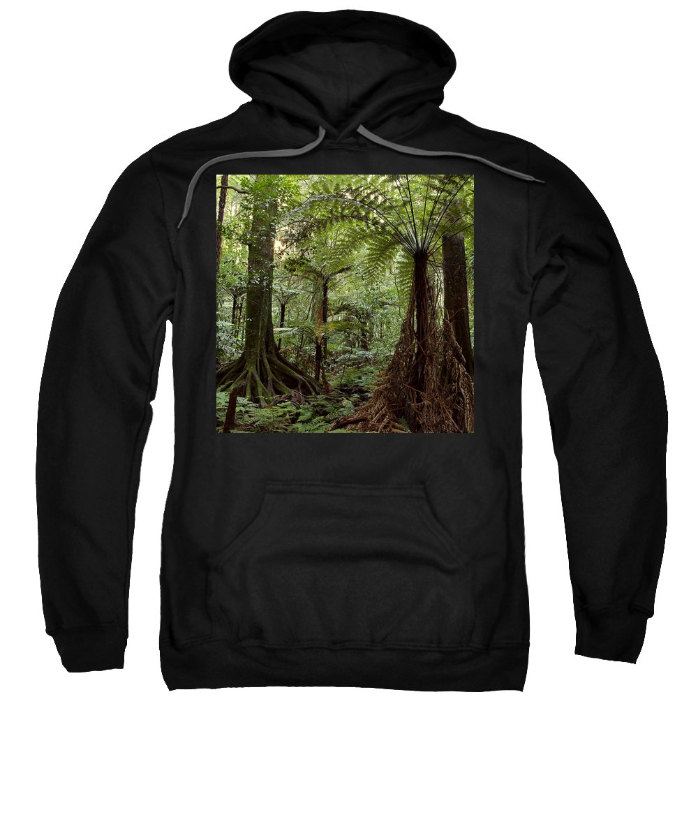 Bush Sweatshirt featuring the photograph Jungle by Les Cunliffe