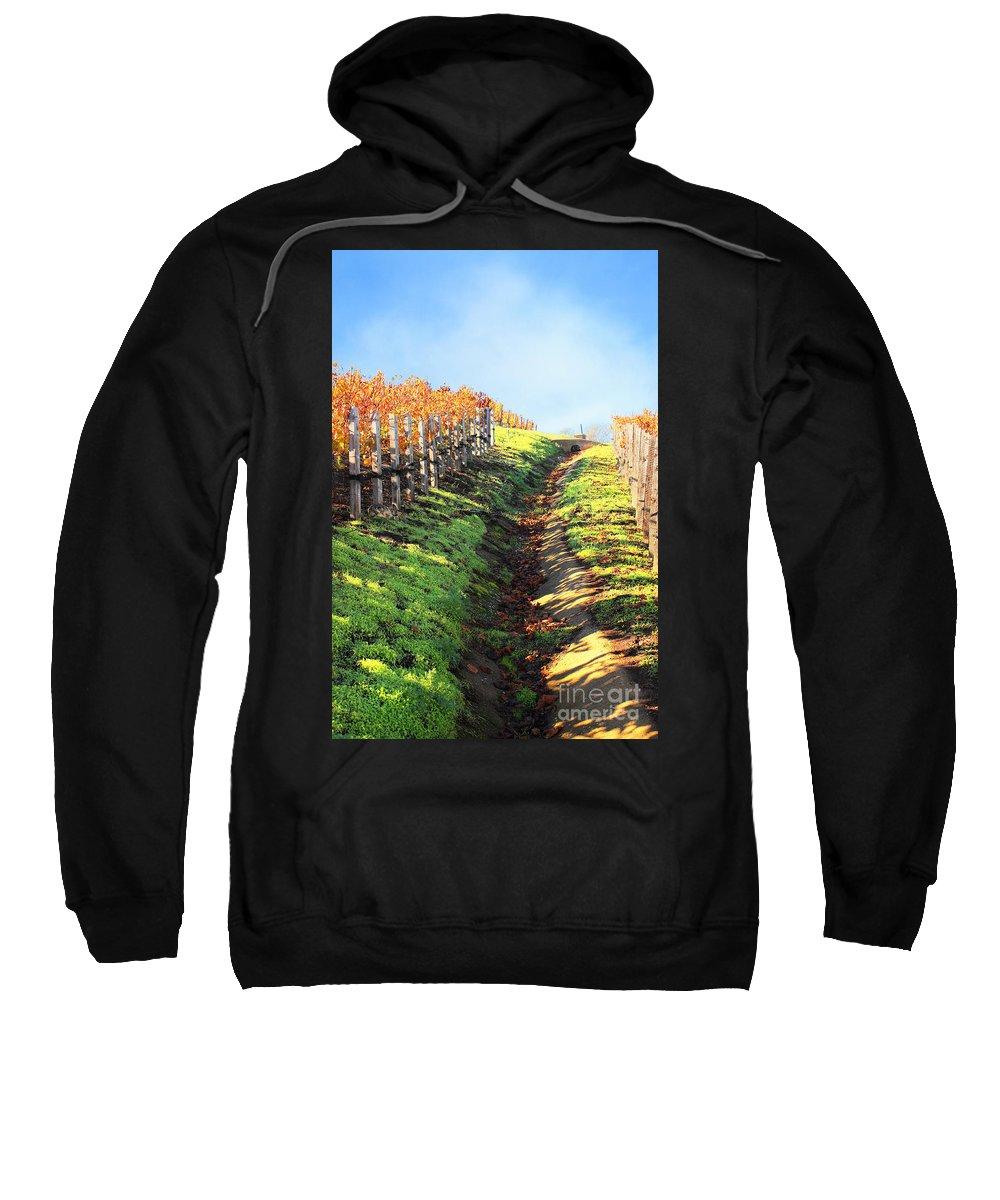 Autumn Sweatshirt featuring the photograph Late Autumn In Napa Valley by Ellen Cotton
